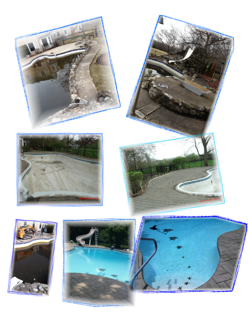 Services Accurate Pool Service